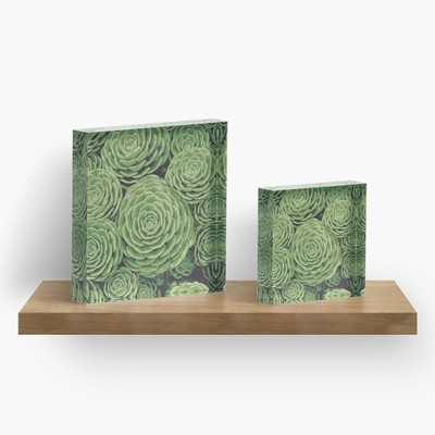 Succulents acrylic art blocks by Eclectic at HeART
