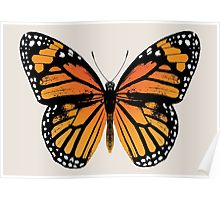 Monarch Butterfly poster by Eclectic at HeART